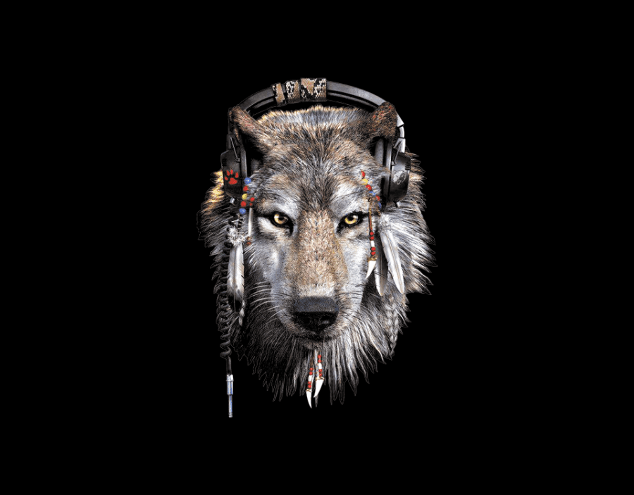 wolf_indian