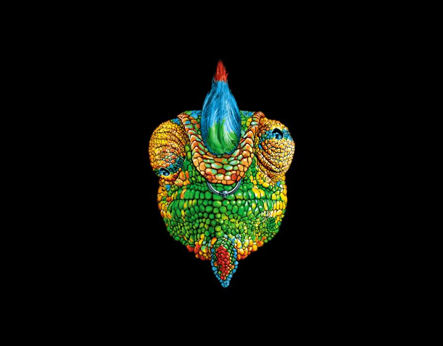 iguana_transfer