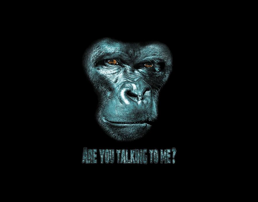 gorilla_transfer